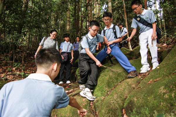 Tzu Chi Teenagers Develop Teamwork Over Nature Hike
